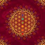 Flower of life - chakras